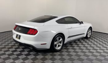Used 2019 Ford Mustang EcoBoost – 1FA6P8TH0K5175916 full